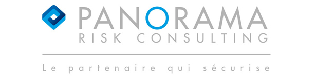 Panorama Consulting